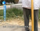 电视问政直播回头看:天桥区、济阳县 作风监督面对面20170716完整版