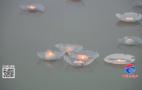 正月十五闹元宵:黄河岸边放河灯 点点烛光寄祝福