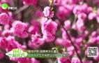 (济南少儿)春拍济野 踏青赏花忆童年——启动仪式在济南野生动物世界举行