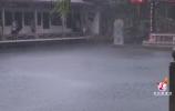 趵突泉达到今年水位最高值!实现15年连续喷涌几成定局
