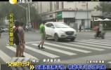 交通违法随手拍:机动车不礼让斑马线