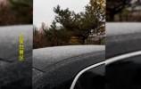 济南迎来第一场雪,南部山区山顶飘瑞雪