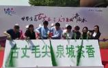 视频:世界生态古丈茶 遇见 天下泉城济南水
