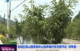 鋼城區棋山國家森林公園幸福村:美麗鄉村讓村民看得見幸福