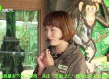 """(济南少儿报道)济南野生动物世界——黑猩猩""""巧克力""""七岁生日趴 小粉丝们来打卡"""