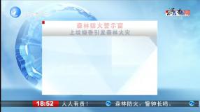 森林防火警示窗 上坟烧香引发森林火灾      济南新闻20200410