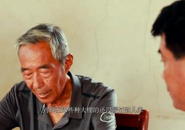 微电影《一诺千金》平阴县东阿镇党委