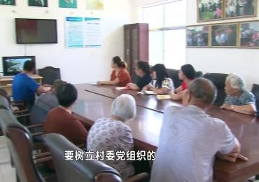短视频《三涧溪村的领路人——高淑贞》章丘区委组织部 济南广播电视台