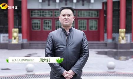 2019古丈毛尖县长代言宣传片