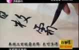 泉映晚霞完整版20180311