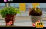泉映晚霞完整版20180312