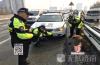 济南:爱犬走失跑上高架 交警急寻将其找回