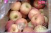 日照果农来济卖苹果不慎占道经营 城管、爱心企业帮忙卖空