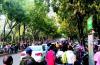 去重陽山會少開車,公交增班次啦?