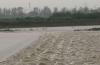 台风暴雨已致寿光直接经济损失近10亿元 低洼易涝区1.8万个大棚进水