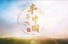百度百家号栏目《丰年中国》走进山东,这里有你想听的丰收故事