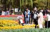 济南:赏泉观景 尽享春日魅力