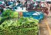 中秋国庆临近,蔬菜和猪肉价格有何变化?新发地问价!