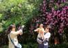 """獲得""""國際花園城市金獎""""!濟南的城市名片還有這些……"""