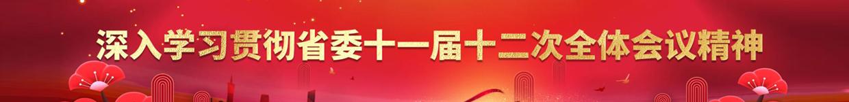 深入学习贯彻省委十一届十二次全体会议精神
