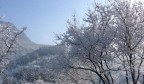 大雪过后 济南的红叶谷美得不像话!