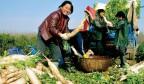 《济南人物》济南锦苇湾生态农业合作社长王长军