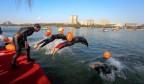第六届济南市冬季畅游泉水国际邀请赛周末在大明湖开赛