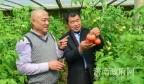 """山东济南,有位多年研发解决农产品农药残留的""""疯人"""""""