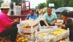 【钢城区镇域经济高质量发展巡礼】汶源街道:稳中求进谋跨越