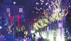 """【网络中国节·春节】万点""""星光""""满枝头 扮靓""""金街""""迎新年"""