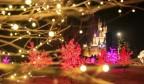 【网络中国节·元宵】在济南元宵节怎么过?赏灯会、猜灯谜、做花灯