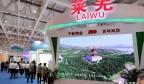 莱芜区参展第二届中国国际文化旅游博览会