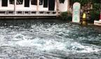 趵突泉水位破30米大关 刷新56年来最高地下水位纪录