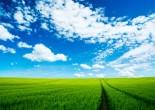 你我携手攻坚 共建生态济南——写在第49个世界环境日到来之际