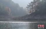 中国启动国家级森林公园淘汰退出机制