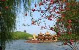 """春节说""""春""""过年话""""年"""" 苏东坡唐伯虎 名家写""""春""""""""年""""知多少?"""