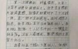 6年级小学生作文《第一次奋进》爆红网络!