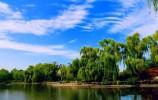 春风三月放纸鸢,来泉城约一场风筝可好?