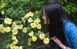 【三月赏花季】今日春分,请收好这份红叶谷春季赏花攻略!