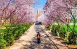 这个春天,我在泉城等您!
