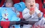 双胞胎哥哥趁弟弟睡着偷吃西红柿,哥哥得意的表情笑喷妈妈,萌翻