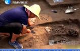 章丘焦家遗址荣获2017年度全国十大考古新发现