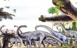 恐龙灭绝新说:吃有毒植物到肚子疼还吃 生存能力堪忧