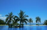党中央决定支持海南全岛建设自由贸易试验区
