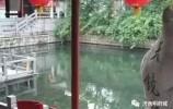 往事 | 江家池街与当年汇泉楼饭庄