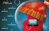 中国政府透明度发布 政府信息公开还要啃哪些硬骨头