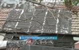 问政   市中区老商埠区平房透风又漏雨 区长表态:已经确定零散棚户区改造