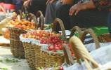 济南南山露天樱桃近乎绝产 往年忙着卖樱桃今年忙着辞订单
