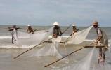 """【视频】这里的渔民居然""""踩高跷""""捕捞?原来这竟是一种…"""