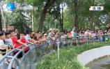 乐虎国际手机版动物园:关爱动物 欢度端午